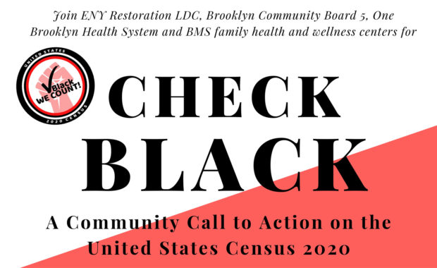 Check Black Campaign for the 2020 Census